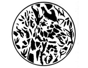 giraffe henri