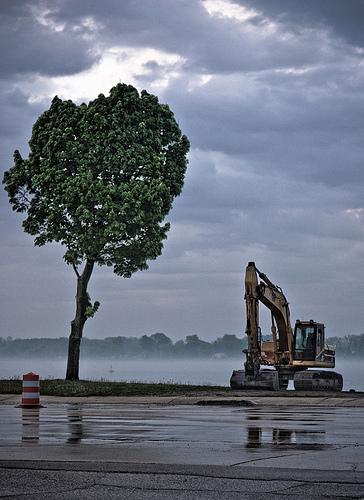 tree and machine